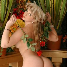 Free Pictures of Sunny Lane